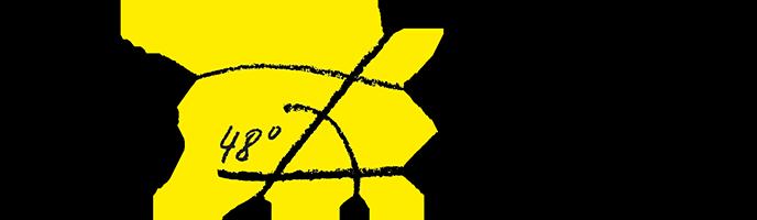 Birmini Design Schreinerei Retina Logo